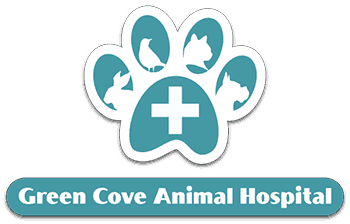Green Cove Animal Hospital logo. The logo is a blue and white paw print. In the middle of the paw print is a medical cross and in each of the different finger pads is a rabbit, bird, cat and dog outline