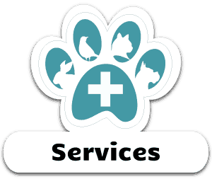 Vet Care Services